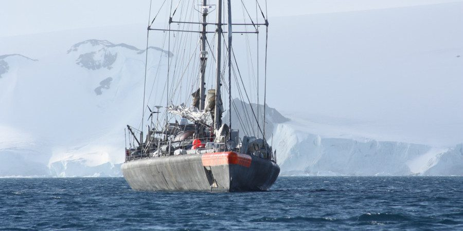 Tara Expeditions