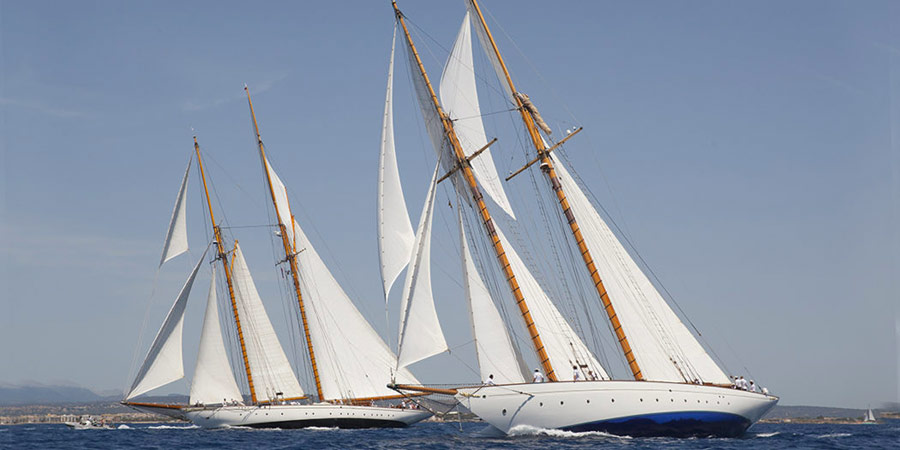 the superyacht cup