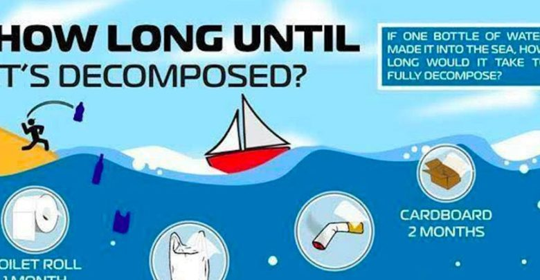 How Long Until Your Waste Is Decomposed In The Water
