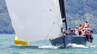 top of the gulf regatta